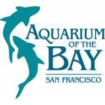 Adventure Aquarium Coupons Jan 2019 Coupon Amp Promo Codes
