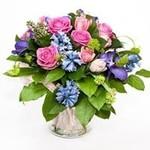 Flowers & Plants Direct
