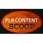 Plrnook.com