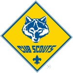 Boy Scouts of America (BSA)