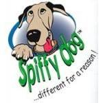 Spiffy Dog