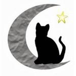 The Magickal Cat