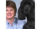 Petdoors USA coupons or promo codes at dogdoors.com