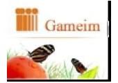 Gameim coupons or promo codes at gameim.com