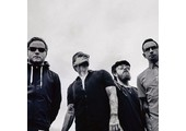 shinedown.com coupons or promo codes